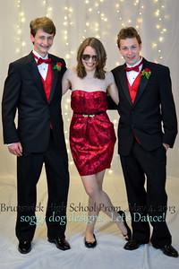 soggy dog designs   BHS Prom 2013 (1015 of 87)