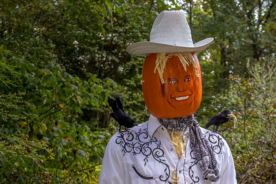 Cheekwood Portraits & Pumpkins 9/26/17