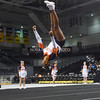 AW 2015 Cheer State Championship, Briar Woods-110