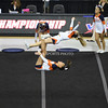 AW 2015 Cheer State Championship, Briar Woods-19