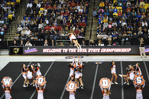 AW 2015 Cheer State Championship, Briar Woods-62