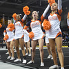 AW 2015 Cheer State Championship, Briar Woods-134