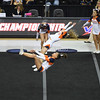 AW 2015 Cheer State Championship, Briar Woods-18