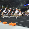 AW 2015 Cheer State Championship, Briar Woods-88