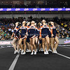 AW Cheer 2015 VHSL 5A State Championship - Briar Woods-12