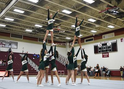 Cheer: 2015 Loudoun County Championship - Loudoun Valley 10.3.16