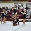 AW Loudoun County Cheer Championships Loudoun County-7