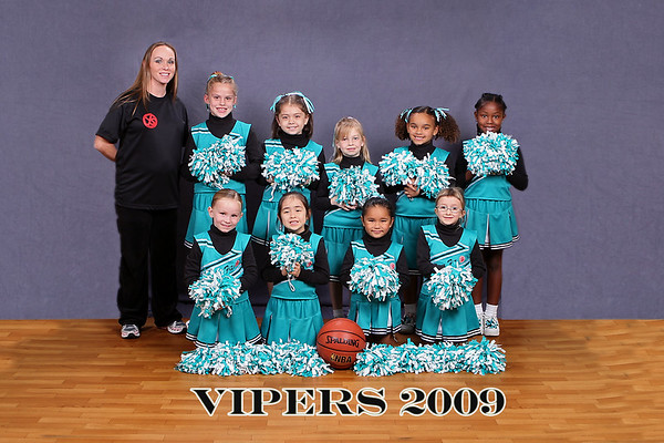 Vipers 1-12