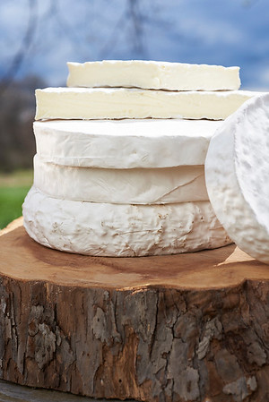 Cheeses at Cherry Grove Farm