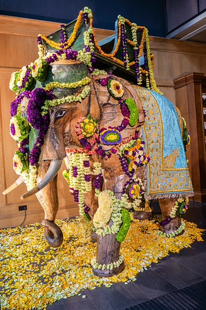Flowered elephant