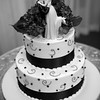 08 Cake Cutting 1289