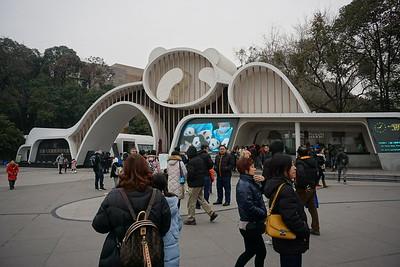Chengdu Pandas 2018