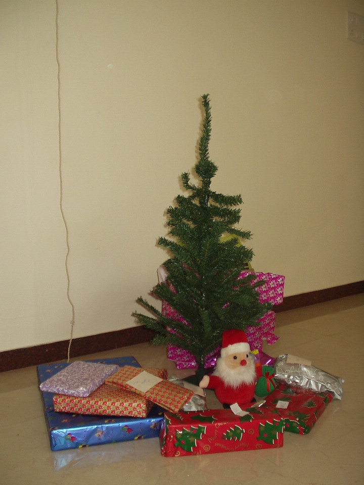 24 December: Tree