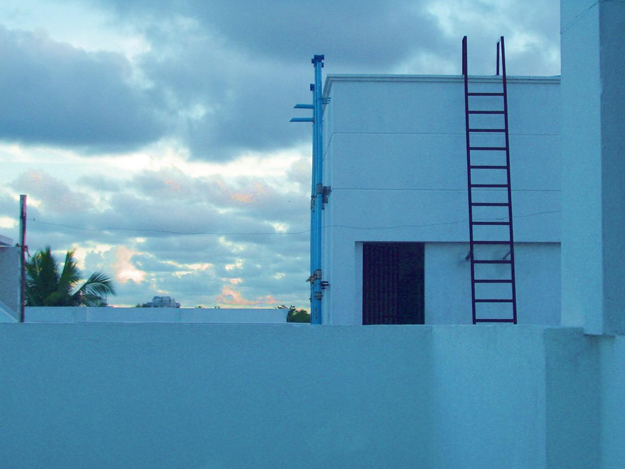 20 January: Blue