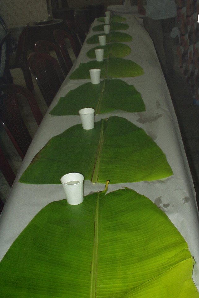 23 April: Banana leaf