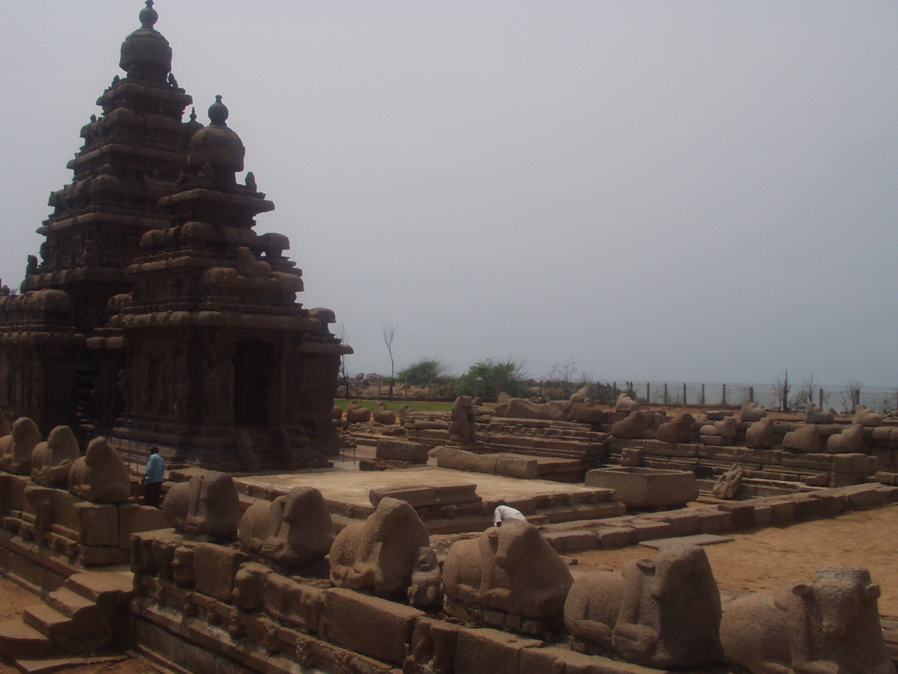10 April: Shore Temple