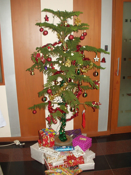 11 December: Tree