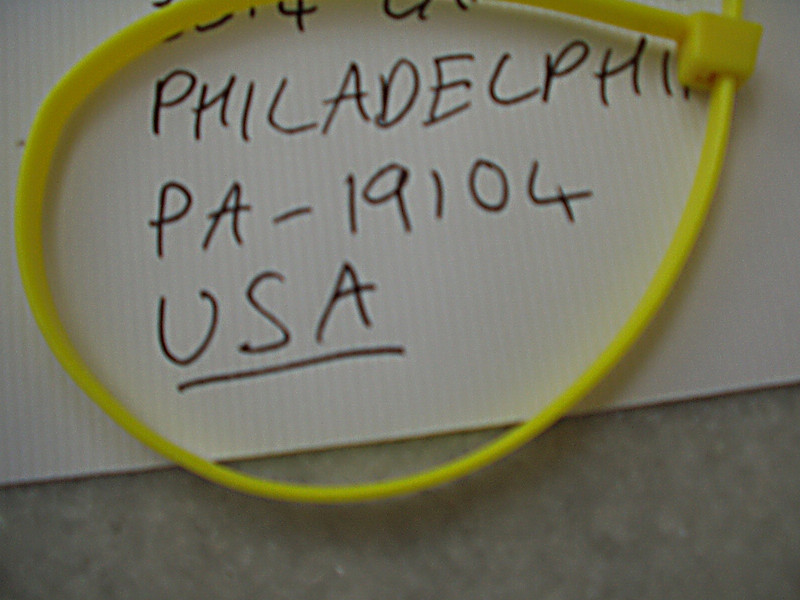 13 February: America