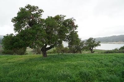 Santa Barbara & San Jose