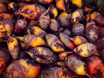 25 Chernobyl zone turnips © David Bickerstaff