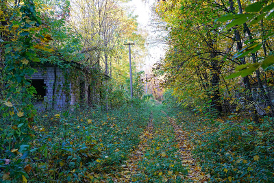 Abandoned roads and houses