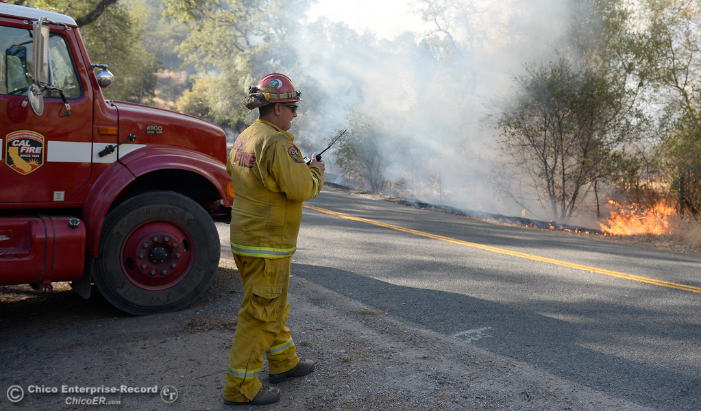 . CAL FIRE Butte County Captain John Jessen keeps an eye on the fire as firefighters backburn to try and keep fire from crossing Cherokee Road below the Wildflower viewing area on the Oroville side Monday Oct. 9, 2017. (Bill Husa -- Enterprise-Record)