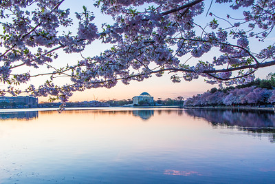 Sunrise - Tidal Basin, April 15, 2015