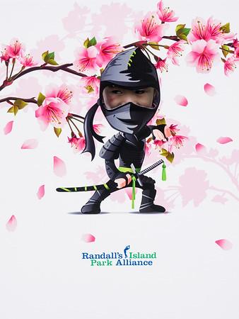 Cherry Blossom Festival 2016 (Randall's Island)