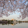 Washington, DC : 53 galleries with 1654 photos