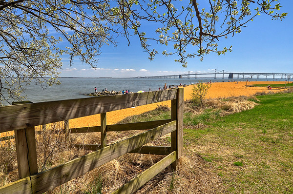 Springtime on the Chesapeake