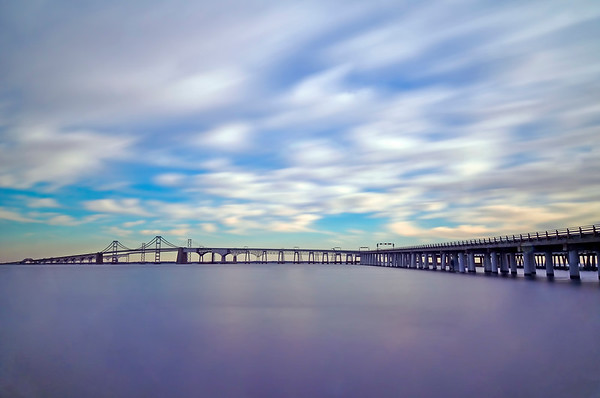 Purple Majesty and the Bay Bridge