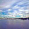Purple Majesty and the Bay Bridge