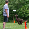 Chesapeake Disc Dogs Club, May 2018-5060