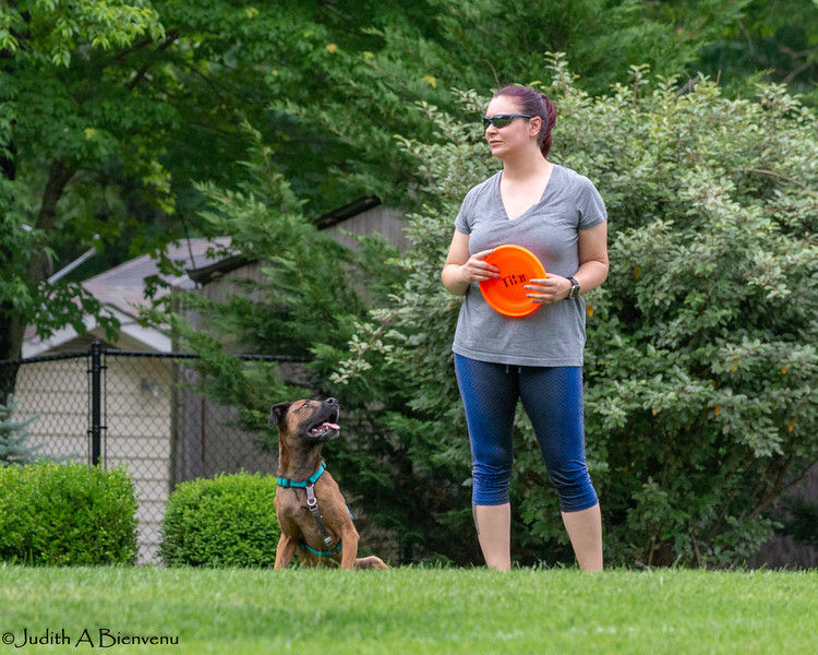 Chesapeake Disc Dogs Club, May 2018-5019