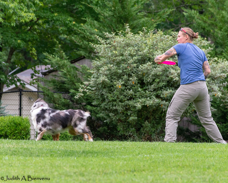 Chesapeake Disc Dogs Club, May 2018-5013