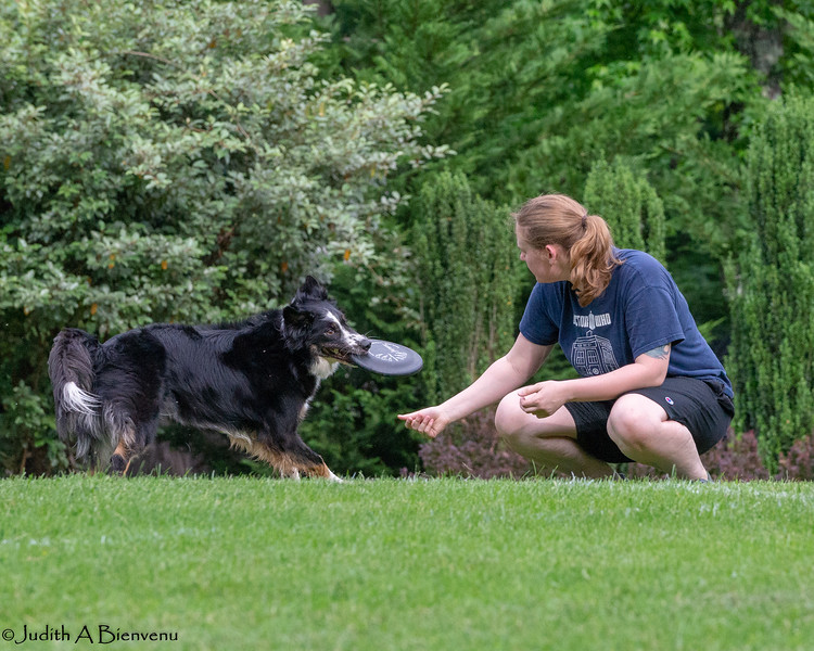 Chesapeake Disc Dogs Club, May 2018-5124