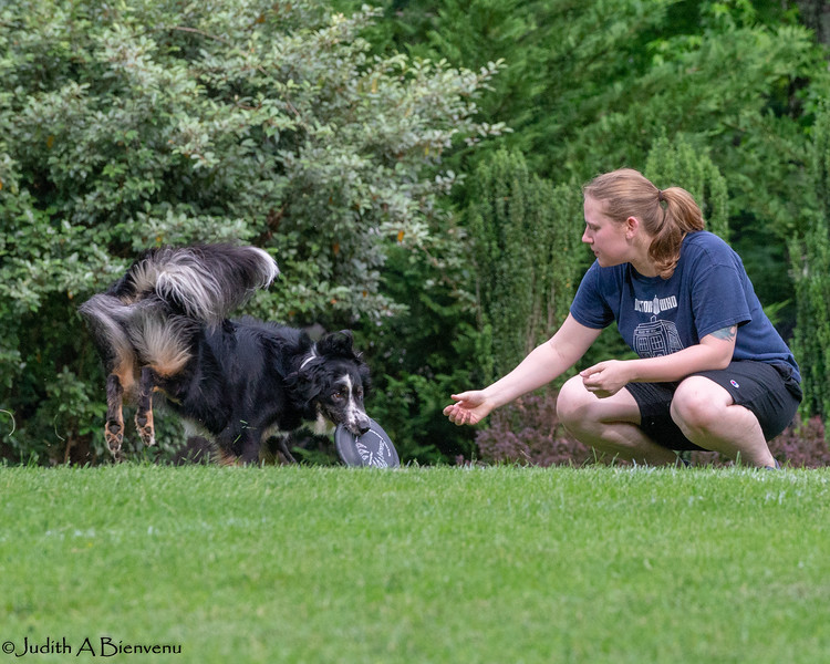 Chesapeake Disc Dogs Club, May 2018-5122