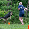Chesapeake Disc Dogs Club, May 2018-5154