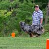 Chesapeake Disc Dogs Club, May 2018-5076
