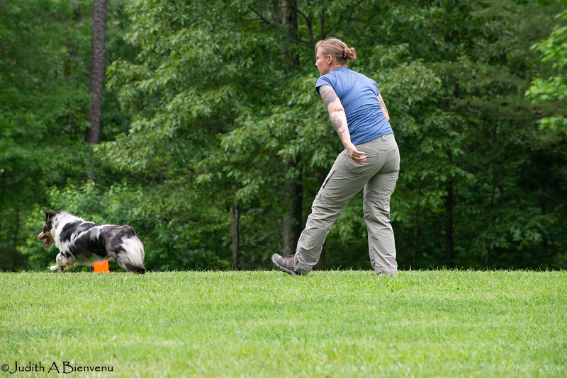 Chesapeake Disc Dogs Club, May 2018-5138