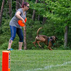 Chesapeake Disc Dogs Club, May 2018-5146