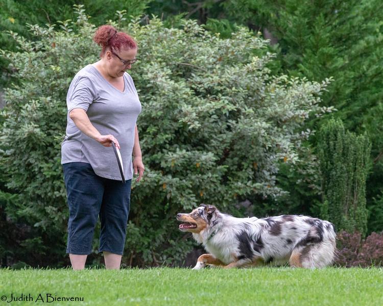 Chesapeake Disc Dogs Club, May 2018-5042