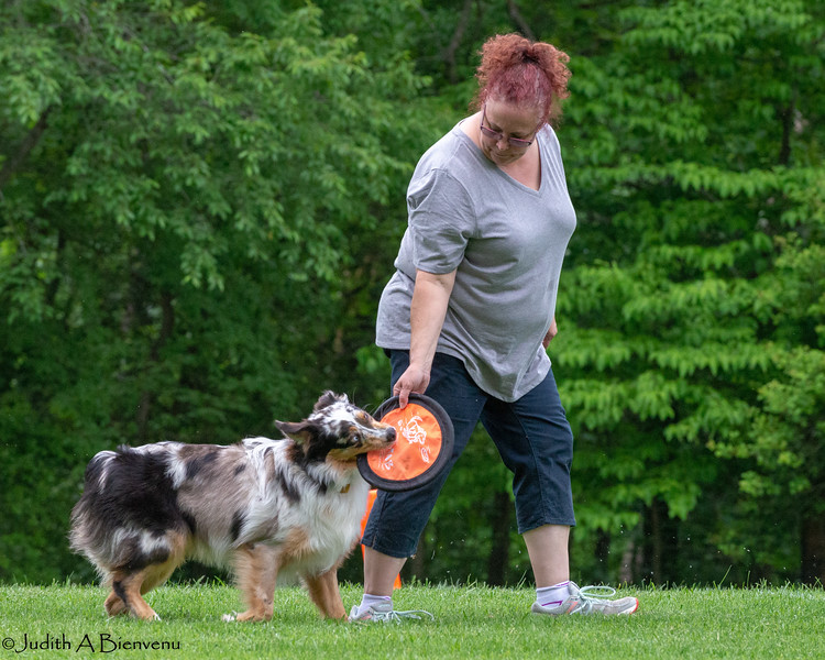 Chesapeake Disc Dogs Club, May 2018-5050