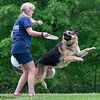 Chesapeake Disc Dogs Club, May 2018-5160