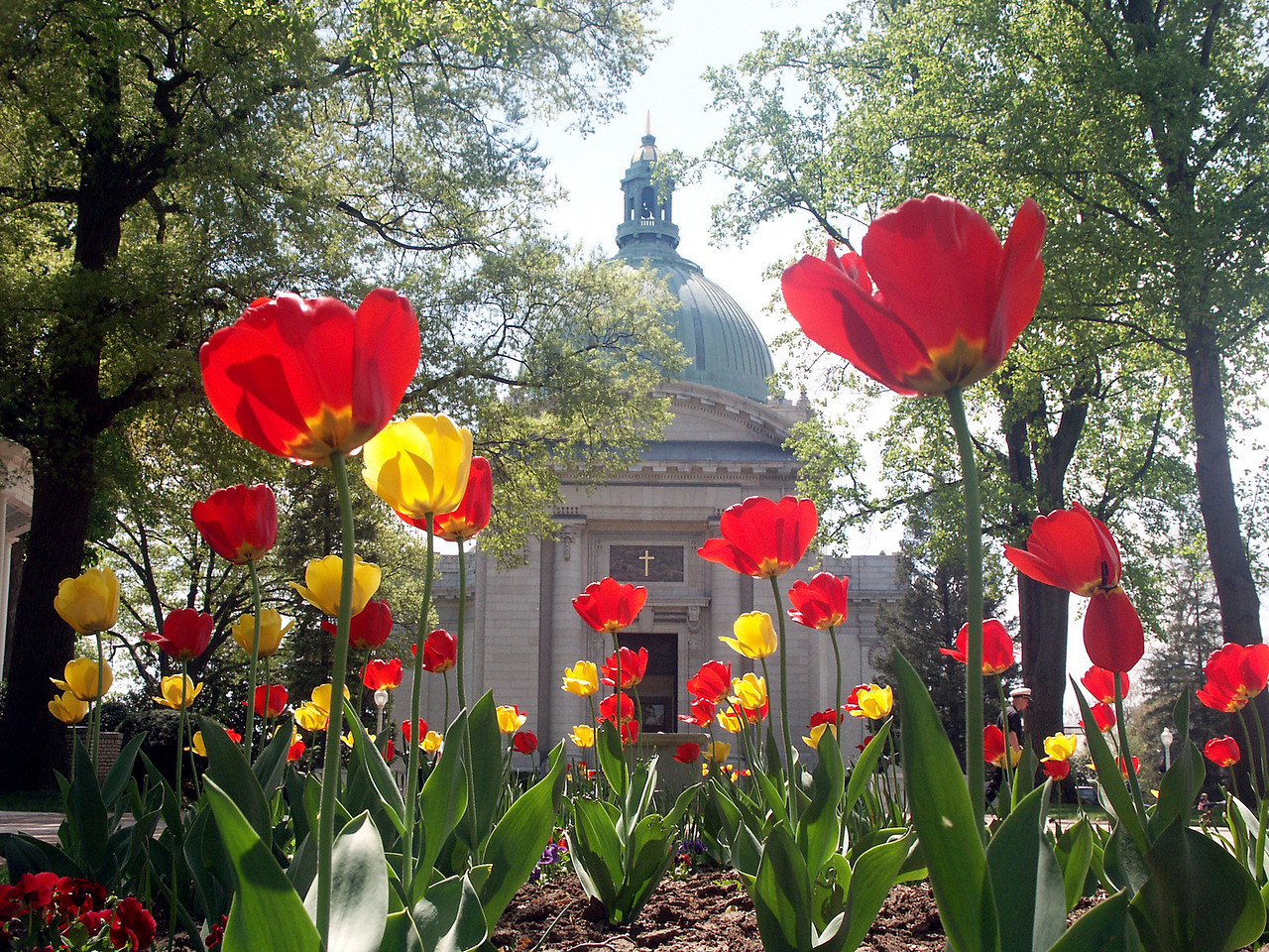 Naval Academy Chapel in the spring.