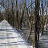 C&O Canal winter scene along mile 54