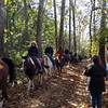 Large group of equestrians encountered on the C&OCA Annual Heritage Hike