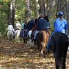 Group of equestrians on the C&O Canal Towpath
