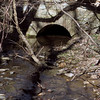 17 Historic C&O Canal Culvert #90 (outflow portal)
