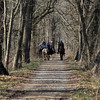 07 Horseback riders on C&O Canal Towpath